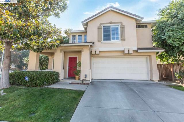 906 Orca Ter, Fremont, CA 94536 (#BE40843188) :: The Kulda Real Estate Group