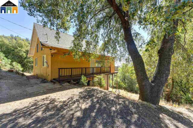 12804 Bonnefoy Rd, Pine Grove, CA 95665 (#MR40843223) :: The Kulda Real Estate Group