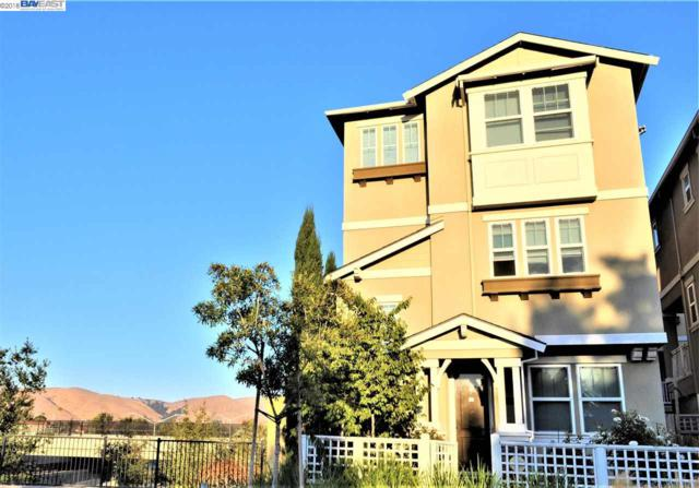 40807 Tomales Ter, Fremont, CA 94538 (#BE40843360) :: Strock Real Estate
