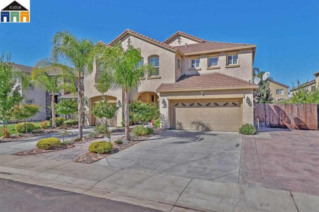 2101 Plumeria Ln., Manteca, CA 95337 (#MR40843498) :: Julie Davis Sells Homes
