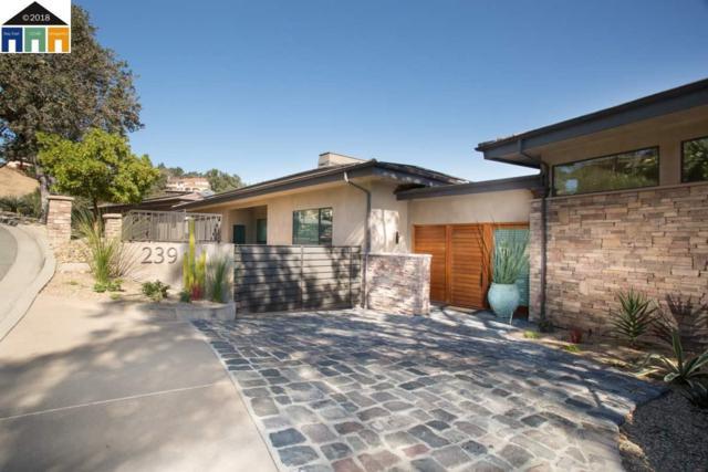 239 Michelle Ln, Alamo, CA 94507 (#MR40843517) :: Brett Jennings Real Estate Experts