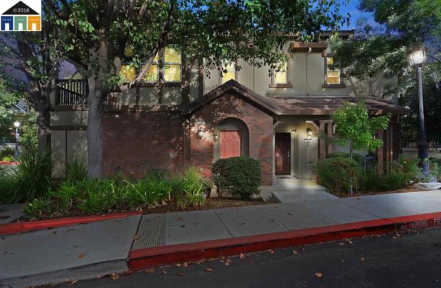 236 W Lucita Way, Mountain House, CA 95391 (#MR40844172) :: The Warfel Gardin Group