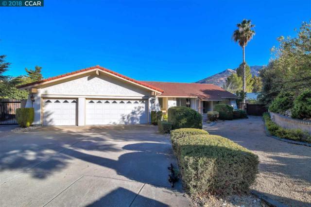 316 Mt Sierra Pl, Clayton, CA 94517 (#CC40844244) :: The Kulda Real Estate Group