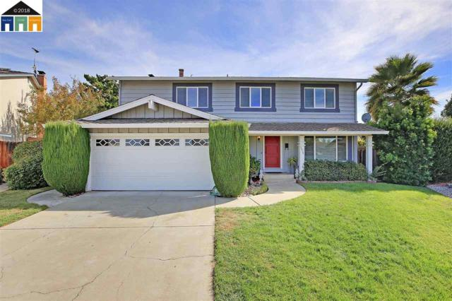 5078 Zircon Ct, San Jose, CA 95136 (#MR40844356) :: Maxreal Cupertino