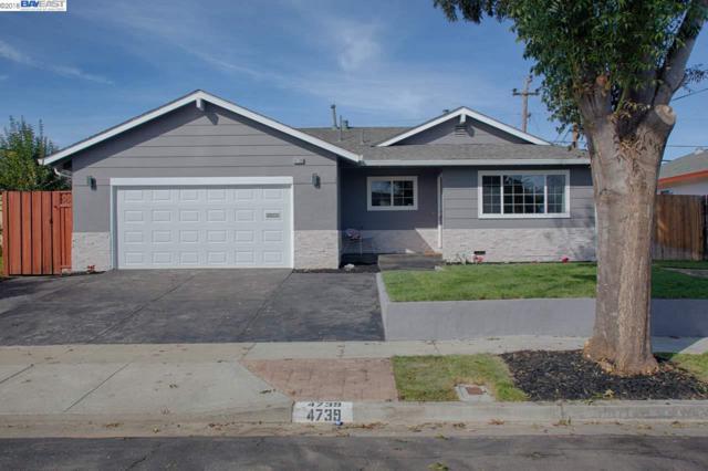 4739 Mildred Dr, Fremont, CA 94536 (#BE40844754) :: The Kulda Real Estate Group