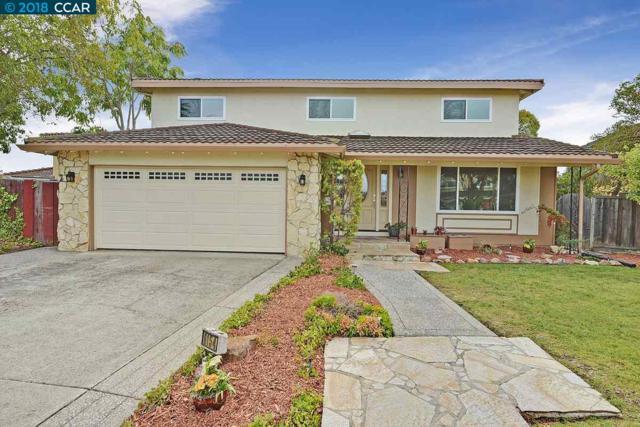 6154 Honeysuckle Drive, Newark, CA 94560 (#CC40844769) :: The Kulda Real Estate Group