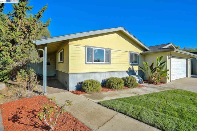 39102 Delano Ct, Fremont, CA 94538 (#BE40844810) :: The Kulda Real Estate Group