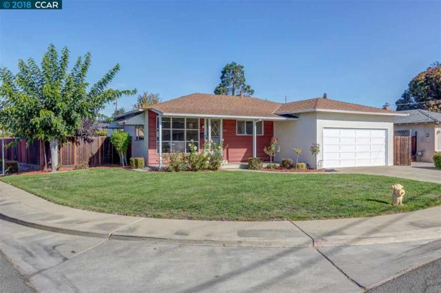 4581 Bianca Dr, Fremont, CA 94536 (#CC40844879) :: The Kulda Real Estate Group