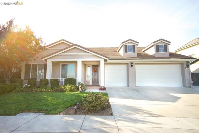 16 Privet Ct, Oakley, CA 94561 (#EB40844927) :: The Kulda Real Estate Group
