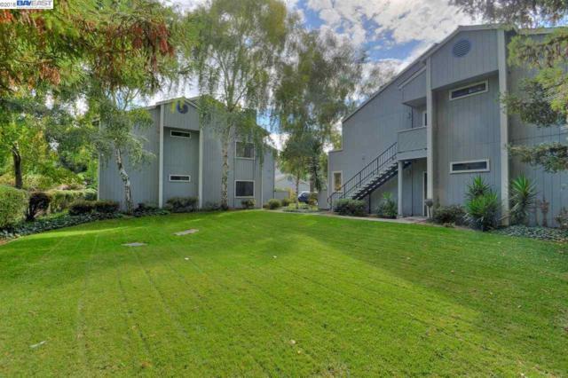 37446 Parish Cir, Fremont, CA 94536 (#BE40844934) :: The Warfel Gardin Group