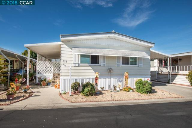 372 Avenida Flores, PACHECO, CA 94553 (#CC40844955) :: Strock Real Estate