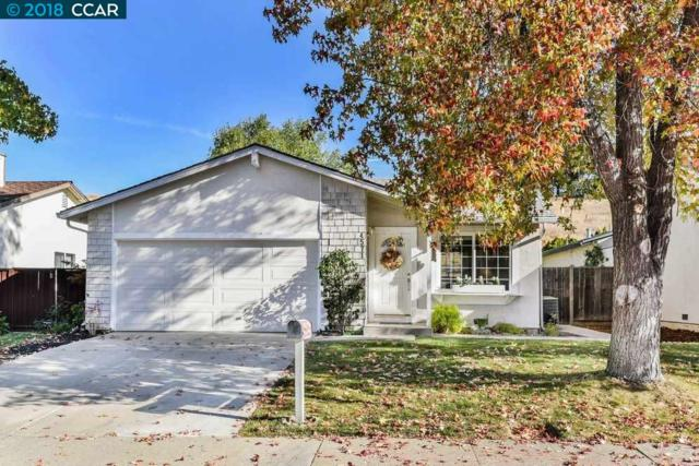 4571 Wildcat Ln, Concord, CA 94521 (#CC40845089) :: The Kulda Real Estate Group