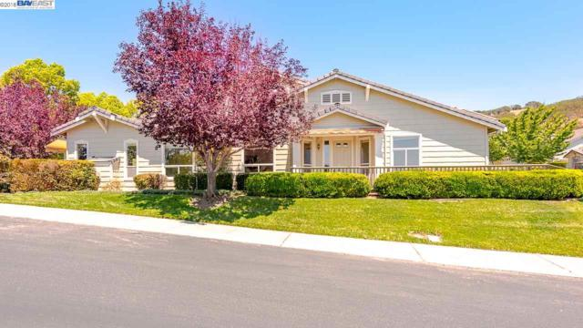 8752 Mccarty Ranch Dr, San Jose, CA 95135 (#BE40845219) :: The Kulda Real Estate Group