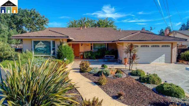 7201 Rosita Ct, Dublin, CA 94568 (#MR40845713) :: Brett Jennings Real Estate Experts