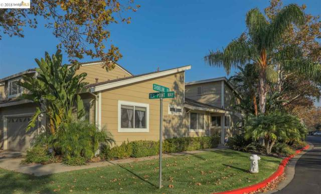 231 Sea Point Way, Pittsburg, CA 94565 (#EB40845752) :: The Warfel Gardin Group