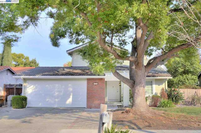 270 N Creek Dr, San Jose, CA 95139 (#BE40845759) :: The Warfel Gardin Group