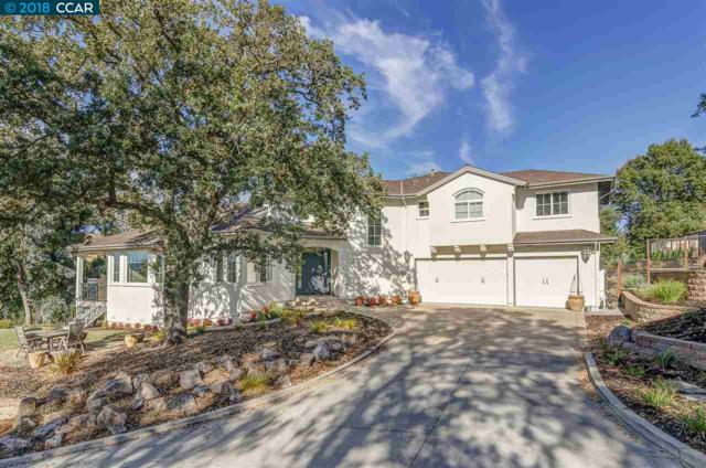 889 Holly Hill Dr, Walnut Creek, CA 94596 (#CC40846160) :: Perisson Real Estate, Inc.