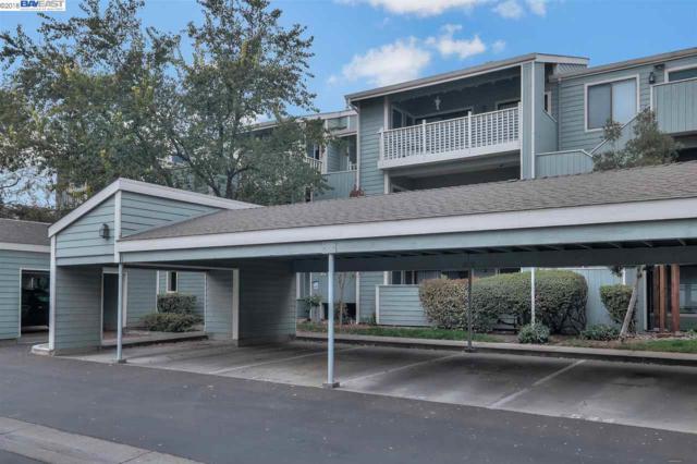 3419 Bridgewood Ter, Fremont, CA 94536 (#BE40846308) :: The Warfel Gardin Group