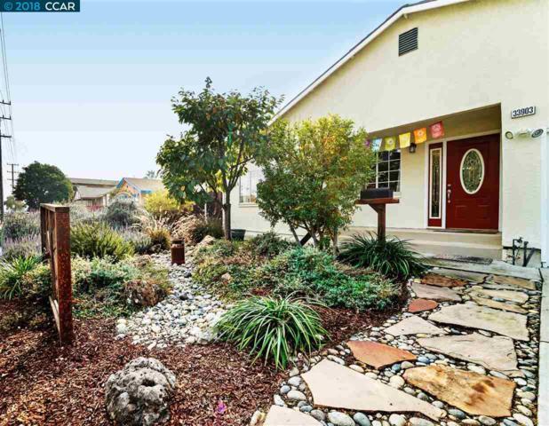 33903 11Th St, Union City, CA 94587 (#CC40846570) :: Strock Real Estate