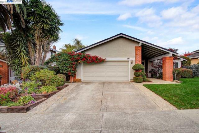 224 Viento Dr, Fremont, CA 94536 (#BE40846923) :: The Gilmartin Group