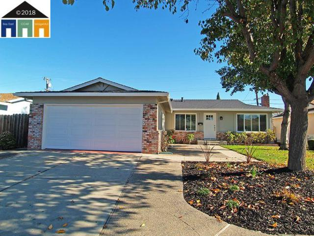 674 Penitencia St, Milpitas, CA 95035 (#MR40847263) :: Brett Jennings Real Estate Experts