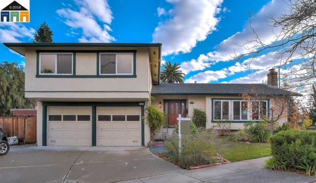 2250 Castillejo, Fremont, CA 94539 (#MR40847301) :: Brett Jennings Real Estate Experts