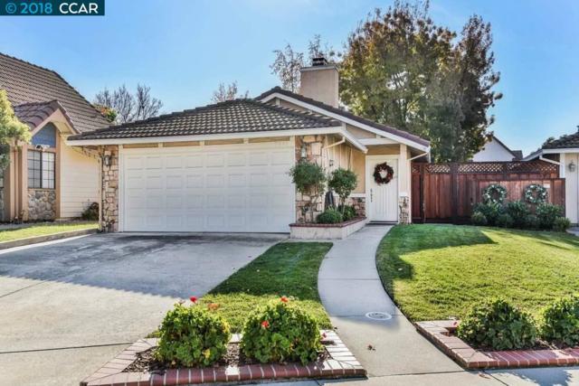 5641 Rainflower Dr, Livermore, CA 94551 (#CC40847462) :: Brett Jennings Real Estate Experts