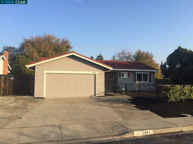 2851 Vista Way, Antioch, CA 94509 (#CC40847979) :: The Kulda Real Estate Group