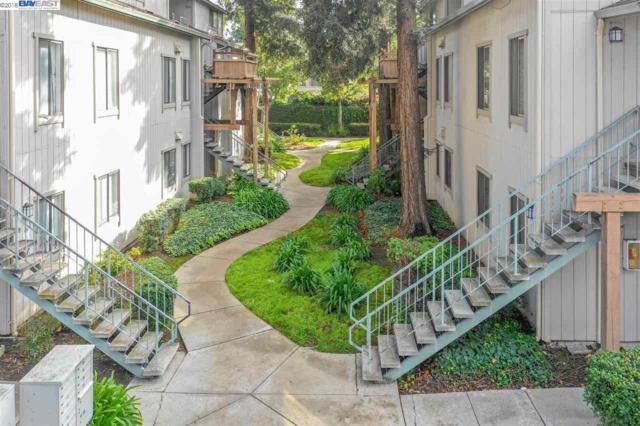 1988 Tradan Dr, San Jose, CA 95132 (#BE40848263) :: The Warfel Gardin Group