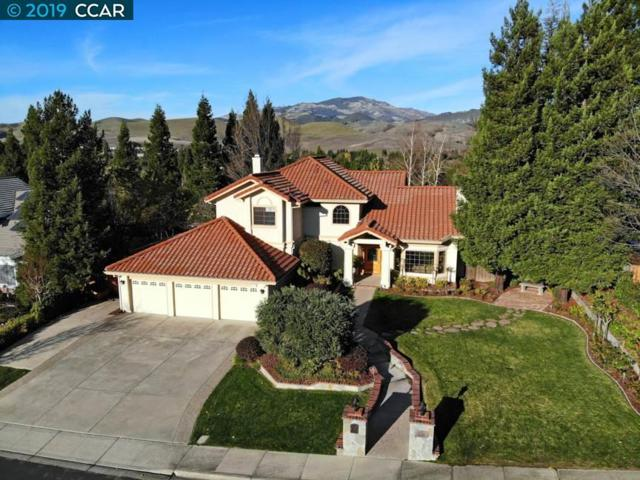 69 Woodranch Cir, Danville, CA 94506 (#CC40848940) :: Strock Real Estate