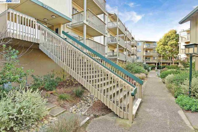 396 Imperial Way, Daly City, CA 94015 (#BE40849099) :: The Gilmartin Group