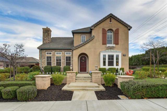 964 Mingoia Street, Pleasanton, CA 94566 (#MR40849202) :: Brett Jennings Real Estate Experts