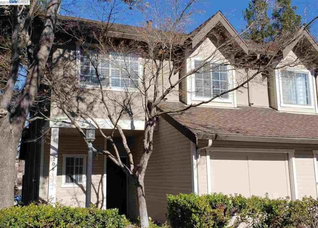 206 Birch Creek Drive, Pleasanton, CA 94566 (#BE40849638) :: The Gilmartin Group