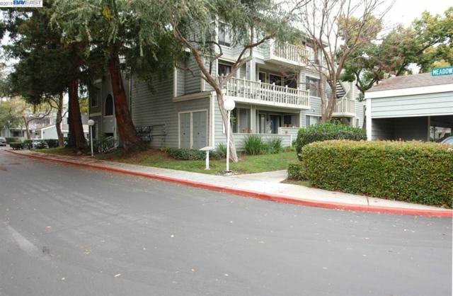 3655 Birchwood Ter, Fremont, CA 94536 (#BE40849775) :: Brett Jennings Real Estate Experts