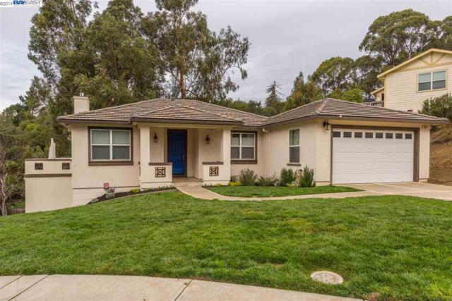23813 Twin Creeks Court, Hayward, CA 94541 (#BE40850001) :: Julie Davis Sells Homes