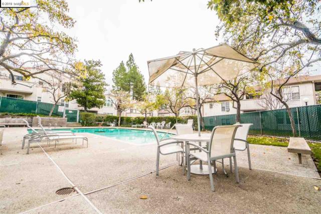 385 Camelback Rd, Pleasant Hill, CA 94523 (#EB40850509) :: The Warfel Gardin Group