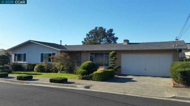 1123 Norvell Ct, El Cerrito, CA 94530 (#CC40850666) :: Strock Real Estate