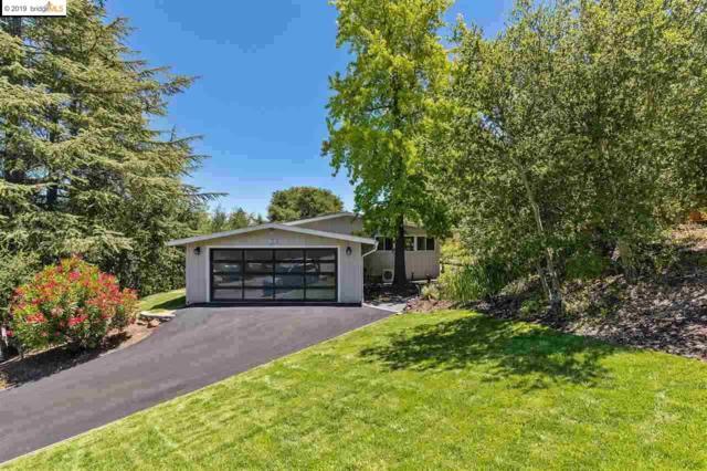 57 Meadow View Road, Orinda, CA 94563 (#EB40850933) :: The Gilmartin Group