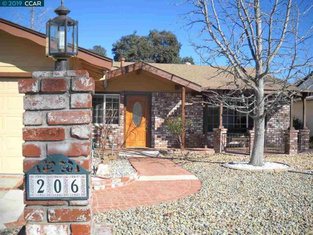 206 Rainier Circle, Vacaville, CA 95687 (#CC40851048) :: The Goss Real Estate Group, Keller Williams Bay Area Estates