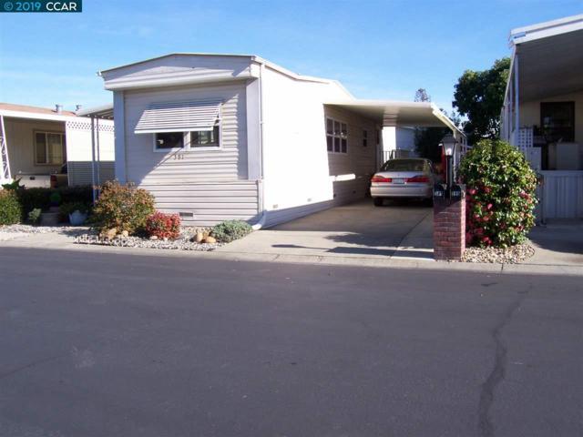 381 Avenida Flores, PACHECO, CA 94553 (#CC40851422) :: Strock Real Estate