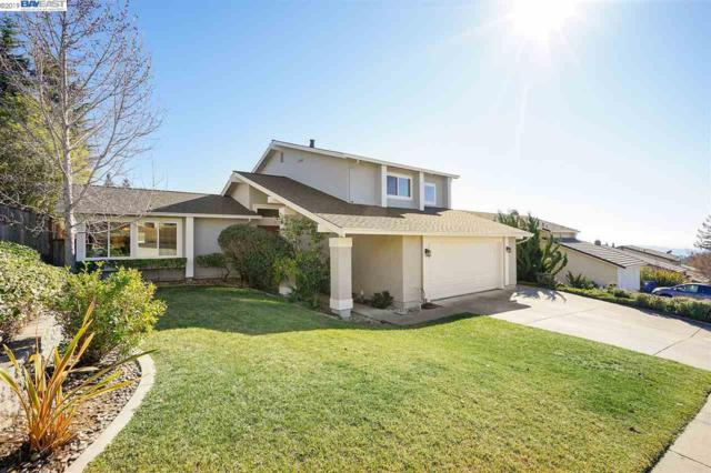 6043 Skyfarm Drive, Castro Valley, CA 94552 (#BE40851521) :: The Goss Real Estate Group, Keller Williams Bay Area Estates