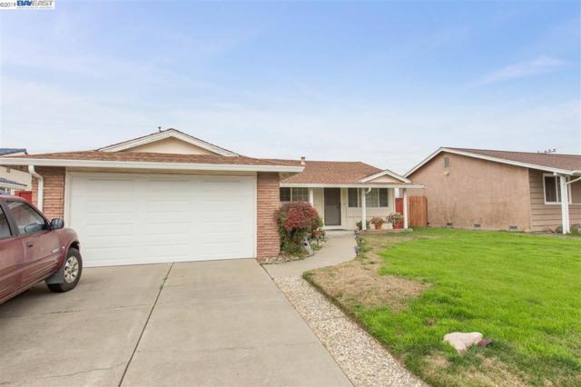 4859 Coco Palm Dr, Fremont, CA 94538 (#BE40851539) :: Julie Davis Sells Homes