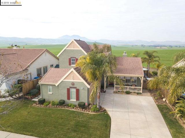 753 Waterville Dr, Brentwood, CA 94513 (#EB40851597) :: The Kulda Real Estate Group