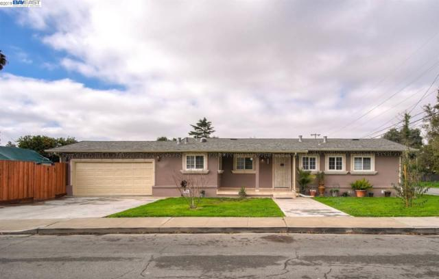 41611 Richardson Dr, Fremont, CA 94538 (#BE40851667) :: The Realty Society