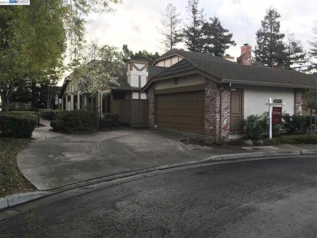 4224 Tanager Ter, Fremont, CA 94555 (#BE40852025) :: The Kulda Real Estate Group