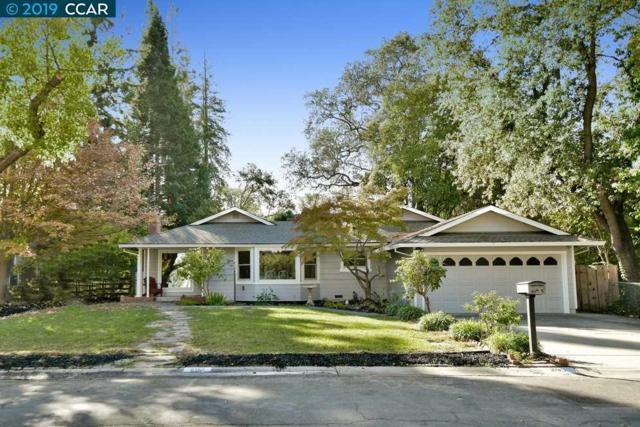 205 Roberta Ave, Pleasant Hill, CA 94523 (#CC40852982) :: Julie Davis Sells Homes