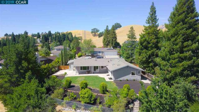 973 Richard Ln, Danville, CA 94526 (#CC40853091) :: The Kulda Real Estate Group