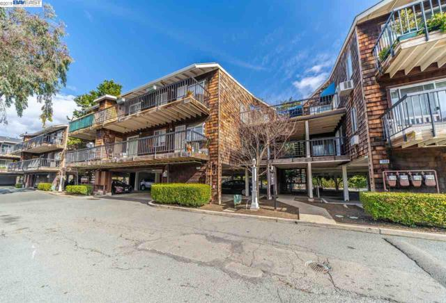 1971 Bonifacio St, Concord, CA 94520 (#BE40853360) :: The Goss Real Estate Group, Keller Williams Bay Area Estates