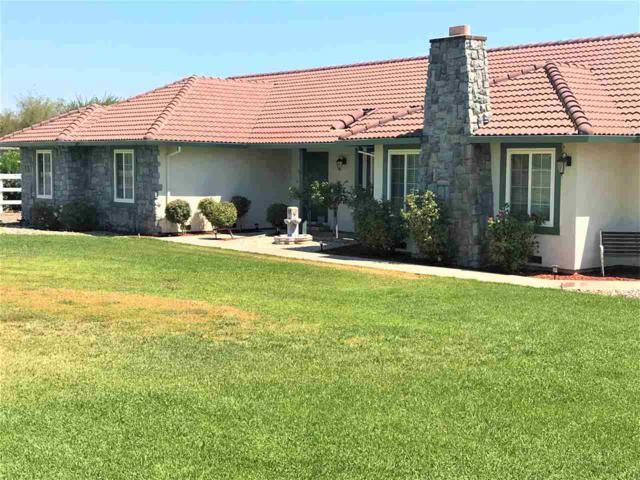 23054 Los Ranchos Dr, Tracy, CA 95304 (#MR40853716) :: Live Play Silicon Valley