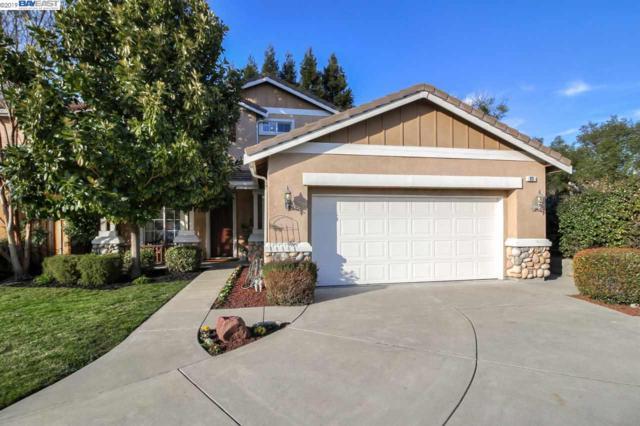93 Plumeria Ct, Danville, CA 94506 (#BE40853933) :: The Kulda Real Estate Group